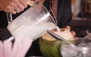 Prato leva leite de coco feito em casa. Confira todos os ingredientes