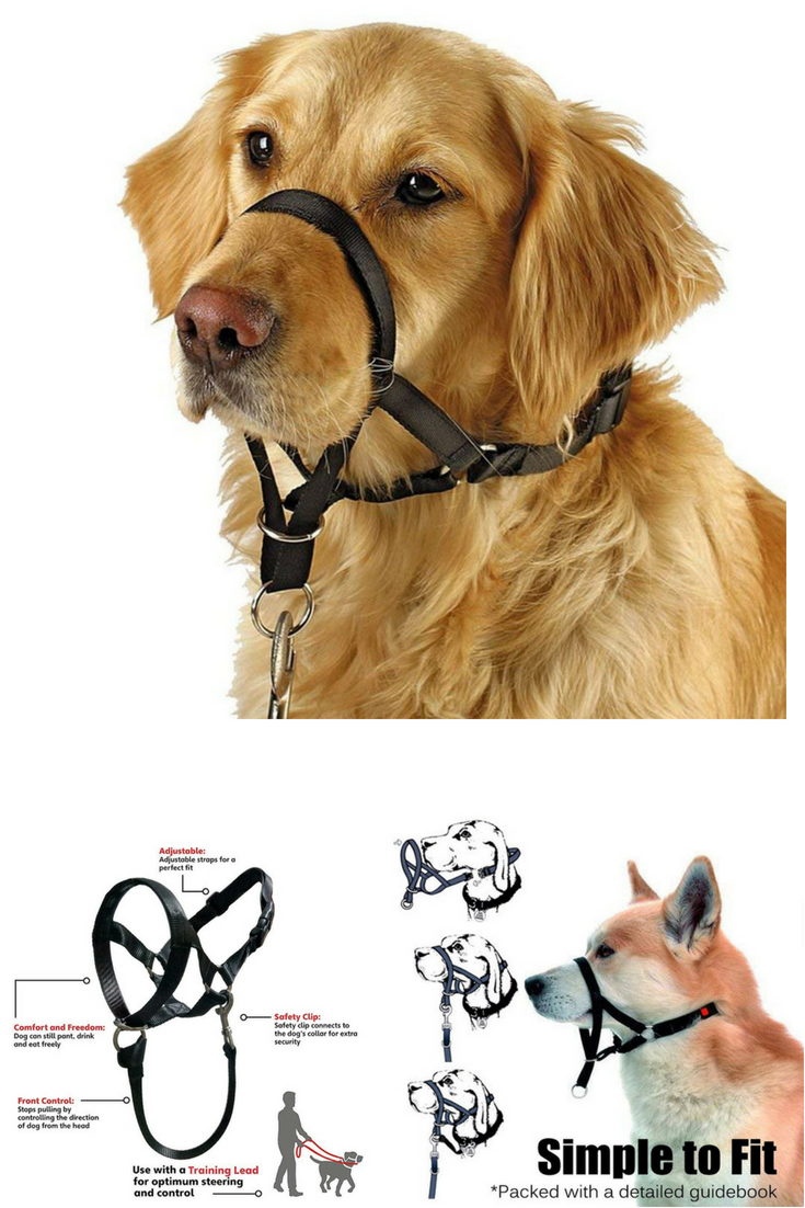 Barkless Dog Head Collar No Pull Training Tool Dogs On Walks Includes Free Training Guide Dog Collars Best Dog Collar Boy Large Dog Collars Cheap Dog Collars
