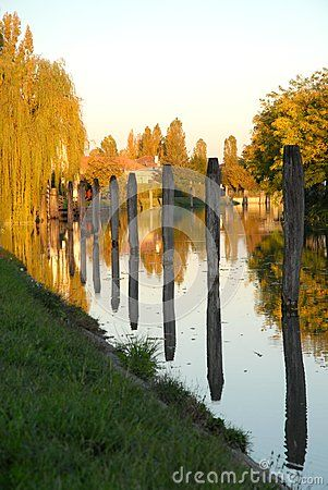 Photo made at a section of a branch of the river Brenta at Dolo, a town in the province of Venice in the Veneto (Italy). In the picture you see about ten mooring posts reflected in the water and some trees including a weeping willow with colorful leaves and illuminated by the setting sun.