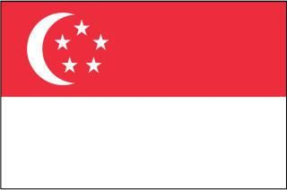 Singapore Flag Printables Singapore Flag Flags Of The World