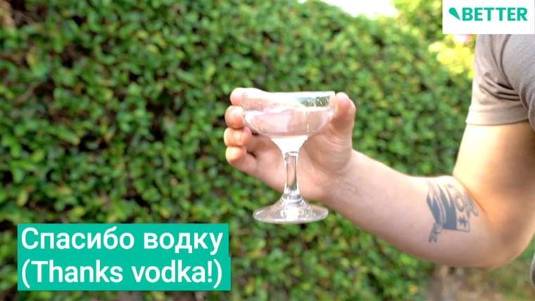 How to clean almost every appliance in your home vodka