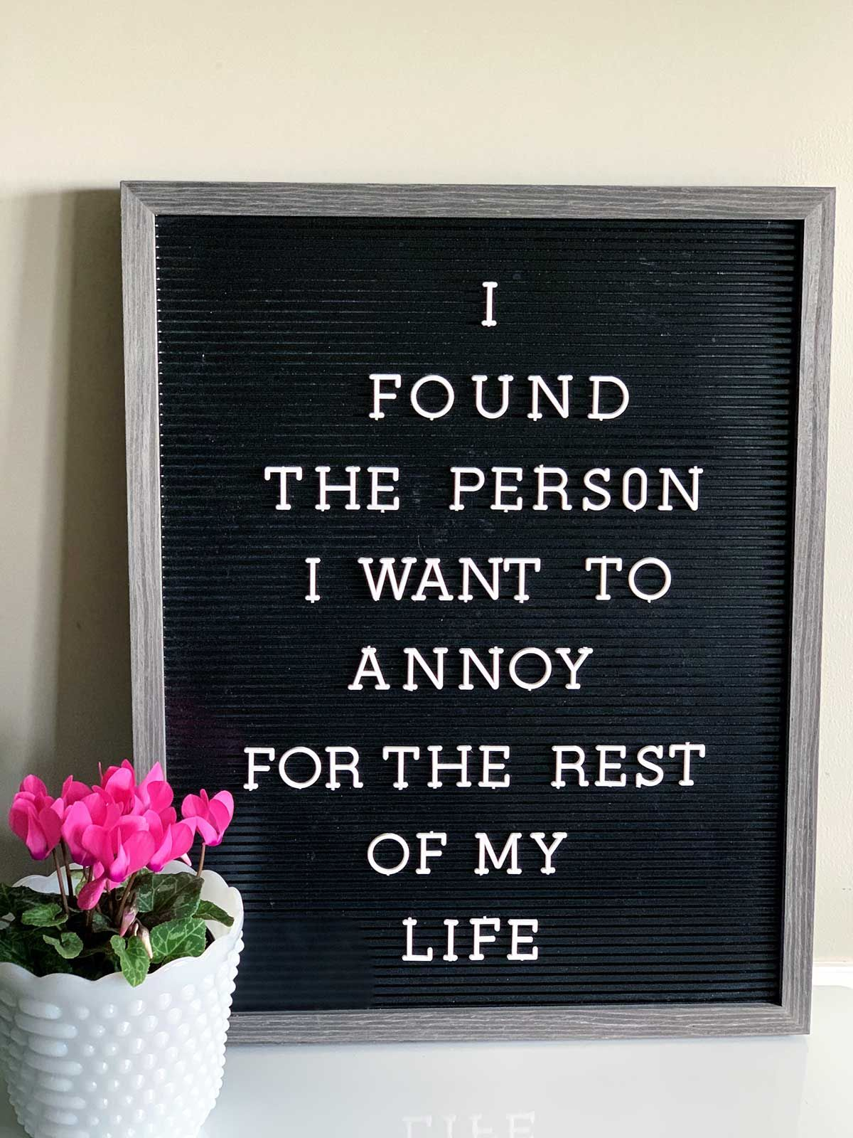 25 Funny Valentine Letter Board Quotes