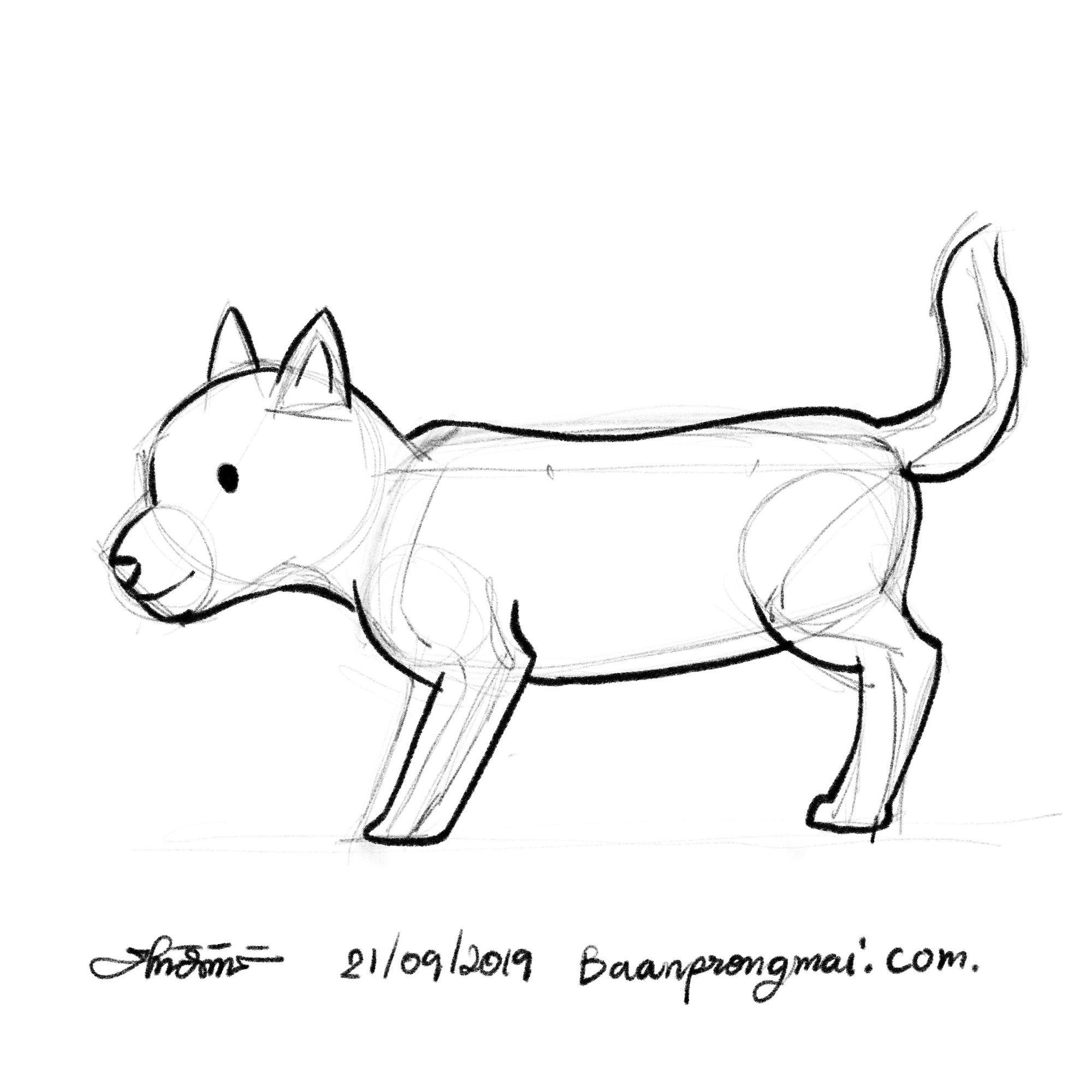 ภาพวาดส น ขด านข างง ายๆ วาด วาดร ป วาดการ ต น ฝ กวาด ฝ กวาดร ป ฝ กวาดการ ต น Draw Drawing Sketching Sketch How To Draw Draw Cartoon How To Draw C