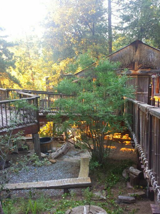 Cozy Lodge Tiki Treehouse Cabins For Rent In Idyllwild Pine Cove Idyllwild Pine Cove Tree House Guest Cabin