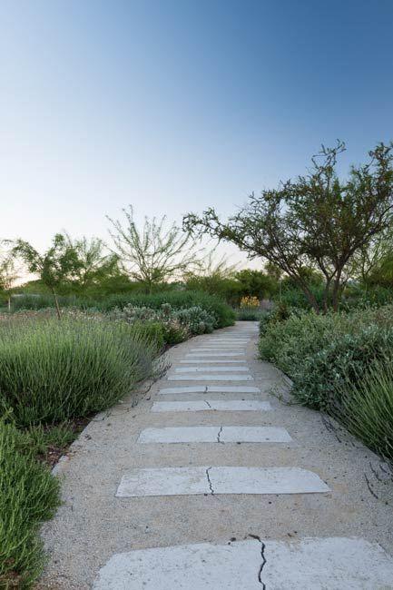 Quilapilun_Botanic_Garden_Park-Panorama_Architects-09-SW « Landscape Architecture Works | Landezine