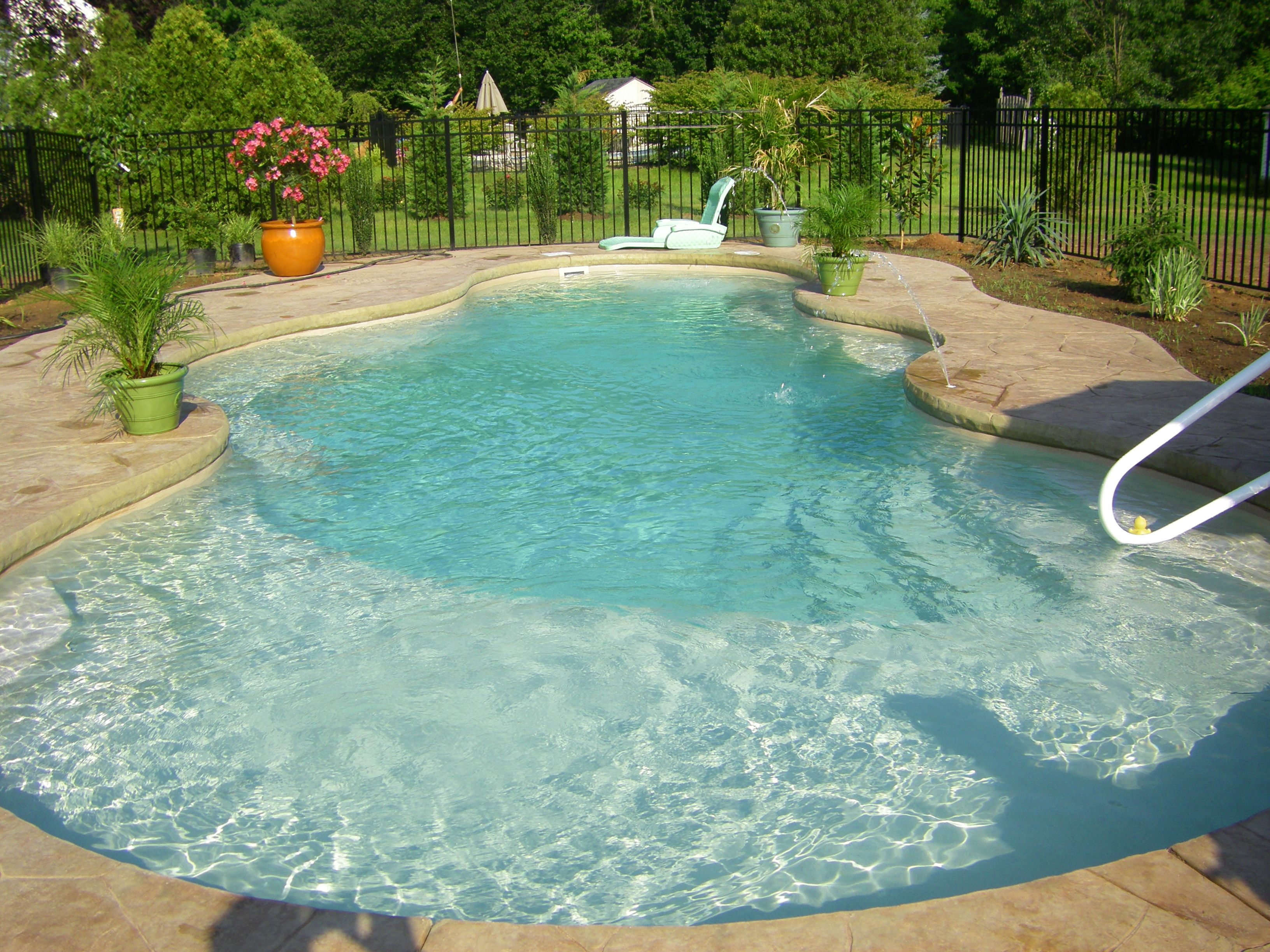 Tanning Ledge  Backyard pool landscaping, Pool landscaping, Small
