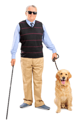 Woman Dog Render People People Cutout Photoshop Resources
