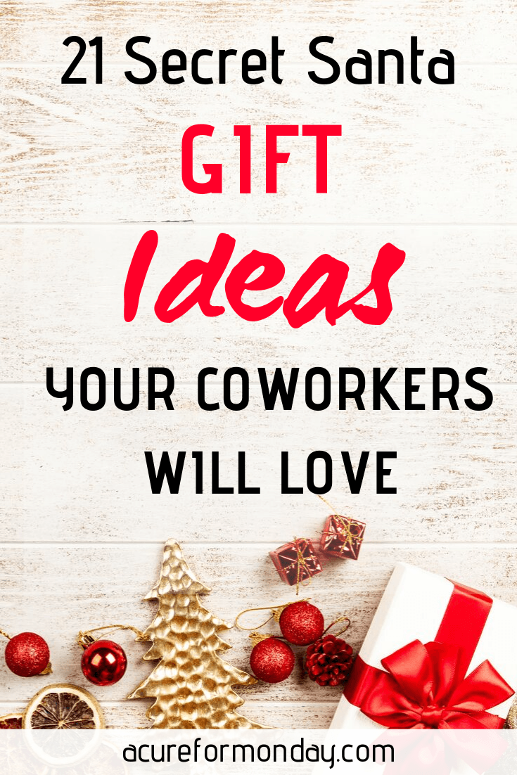 21 Best Secret Santa Gift Ideas For Coworkers (Under $25)