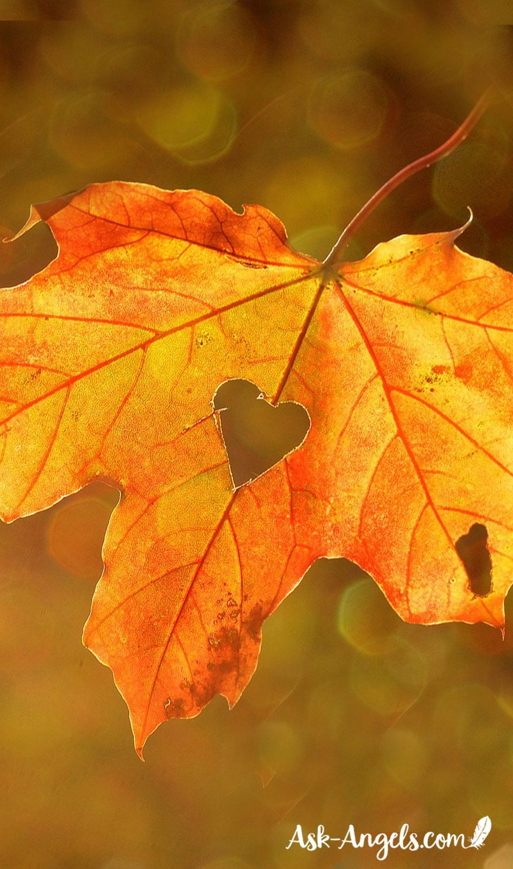 A Simple Autumnal Equinox Ritual - Ask-Angels.com #autumnalequinox Autumnal Equinox Ritual #autumnalequinox