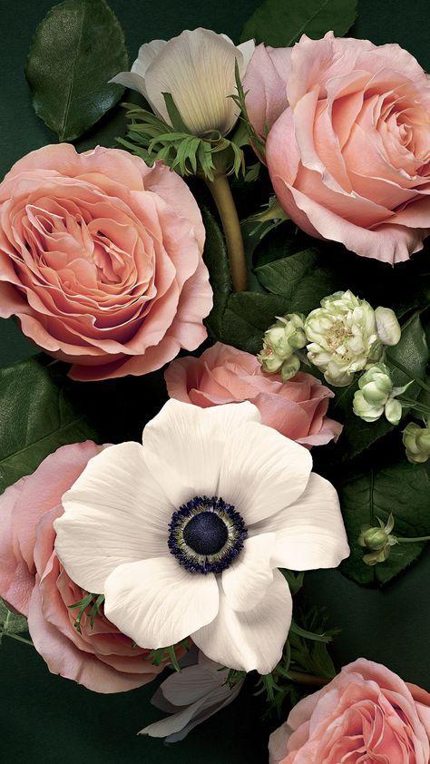 Flowers Pink Wallpaper Pretty 19+ Best Ideas