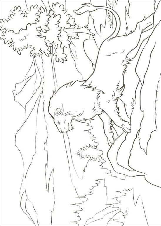 coloring page Narnia (The Chronicles of Narnia ) - King Aslan ...