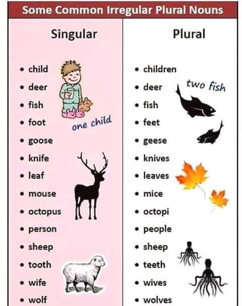 Forum Learn English Fluent Landsome Common Irregular Plural Nouns Fluent Land English Words English Language Teaching English Grammar