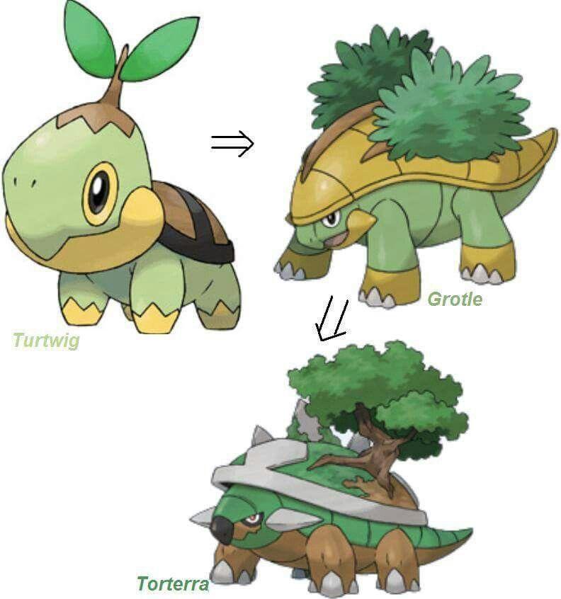 Turtwig Evolution Ss Stuff Pokémon Pokemon Starters Pokemon Eevee