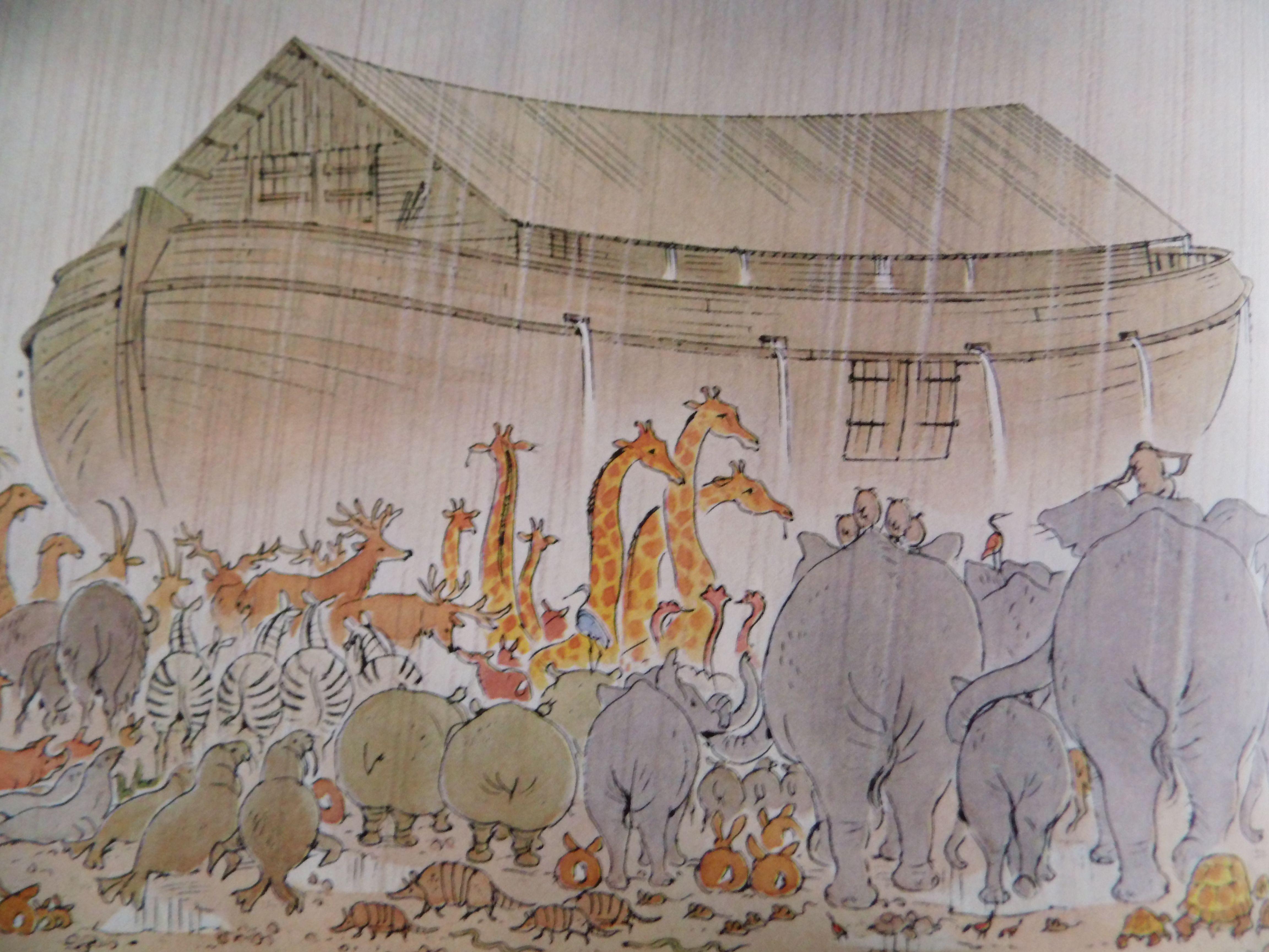 noach peter spier illustraties pinterest ark illustrators