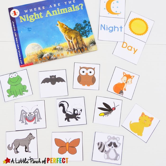 learning about nocturnal animals free printable activities dabbling with books for speech. Black Bedroom Furniture Sets. Home Design Ideas