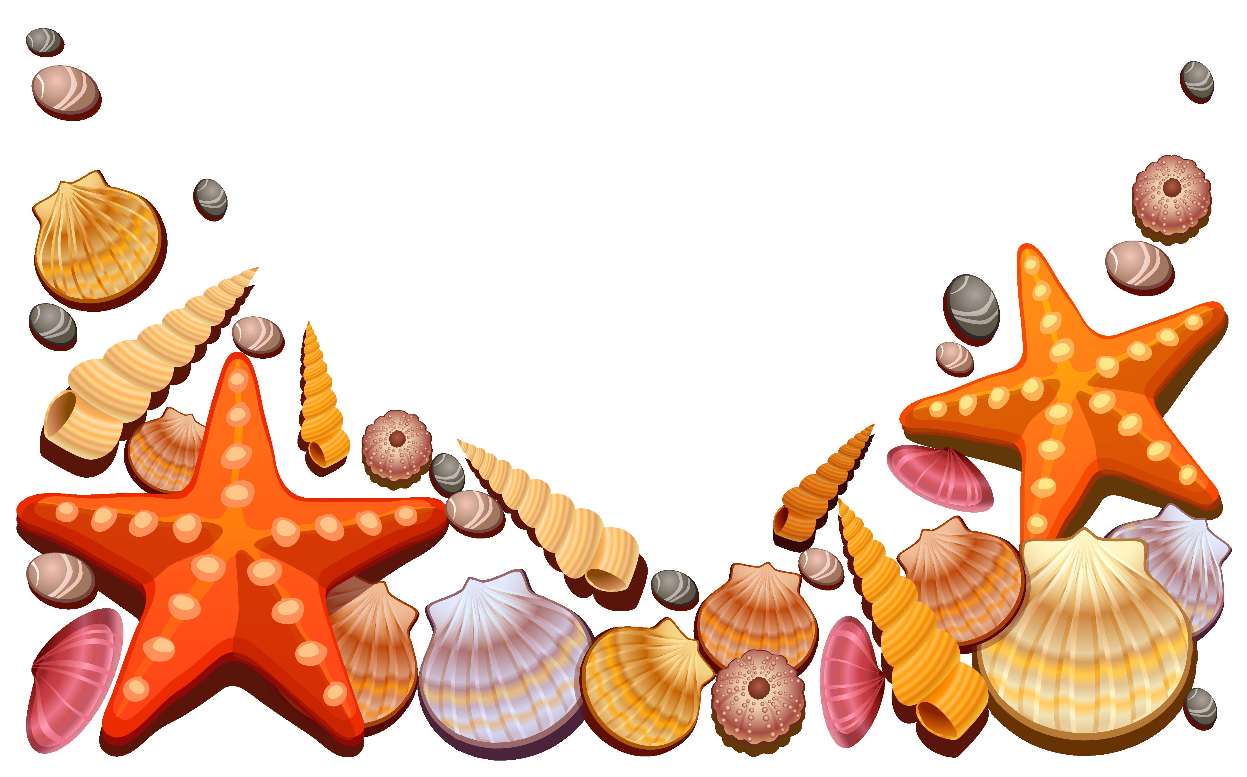 Sea Shells Decor PNG Vector Clipart Strand clipart
