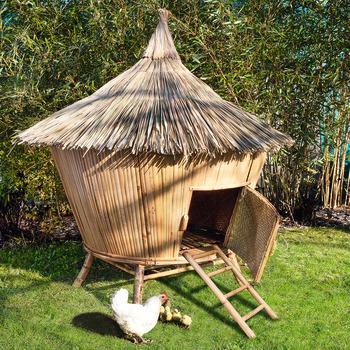 Poulailler Tiki Bambou Poulailler Jardin Poulailler Et Bambou