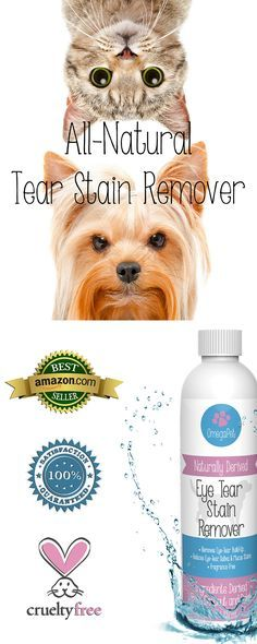All Natural Tear Stain Remover For Dogs And Cats Quickly Cleanses Tear Stains From The Fur Around Your Puppy S Eyes Leavi Dog Remedies Dog Shampoo Pet Hacks