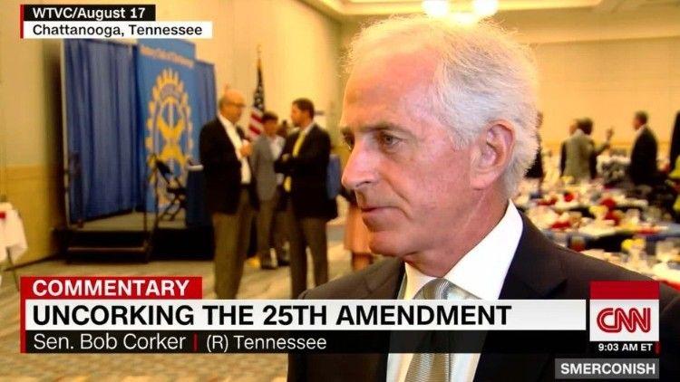 Comment Uncorking The 25th Amendment Cnn Cnn Simple Minds Amendments