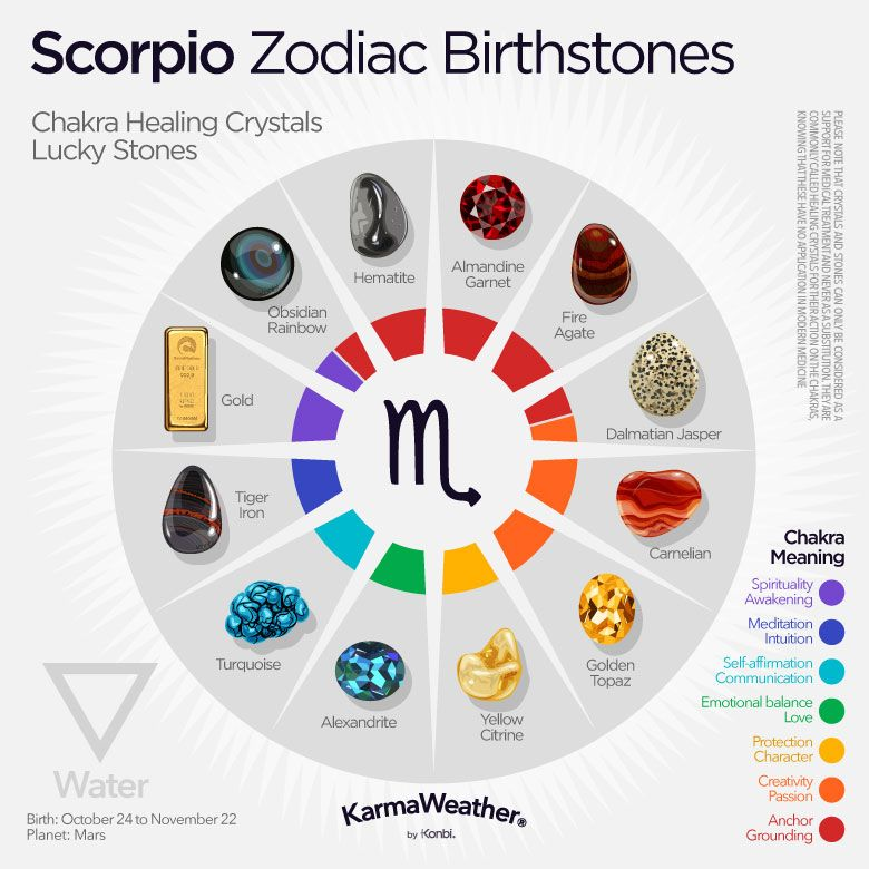 What Is Your Astrology Sign?