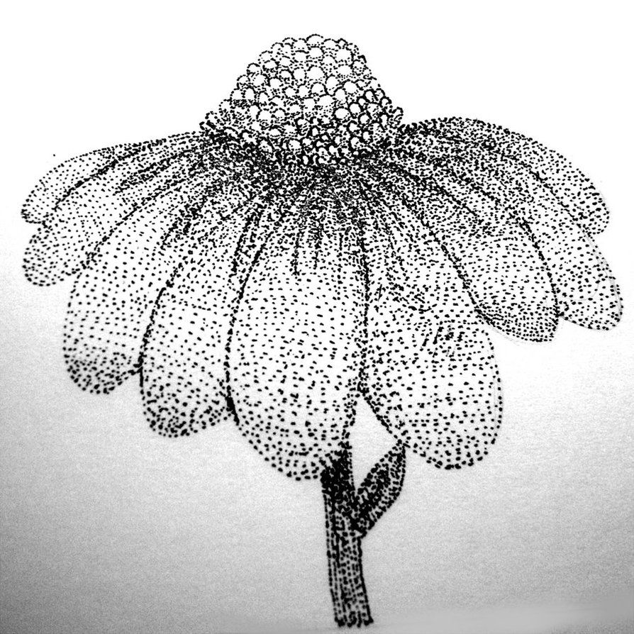 Pointillism Coloring Pages Pointillism Flower By 0okami Rei On