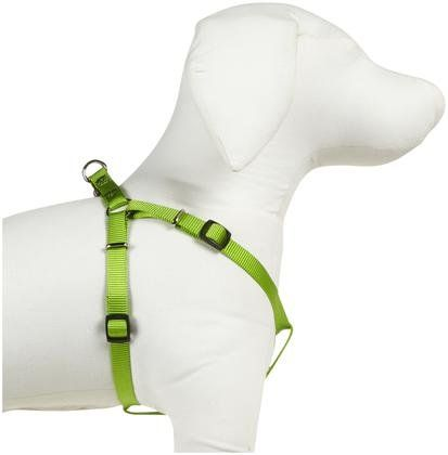 Guardian Gear Nylon 2 Step Harness - Electric Lime
