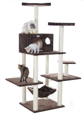 large discount cat tree with hammock   cozycatfurniture   large discount cat tree with hammock   cozycatfurniture     pets      rh   pinterest