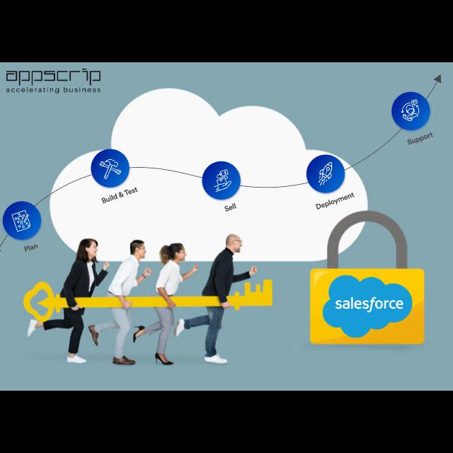 Custom Salesforce & Development Services India