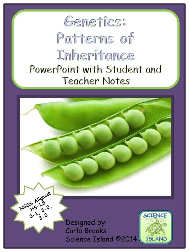 High School Genetics Powerpoint Presentation Covers Mendelian