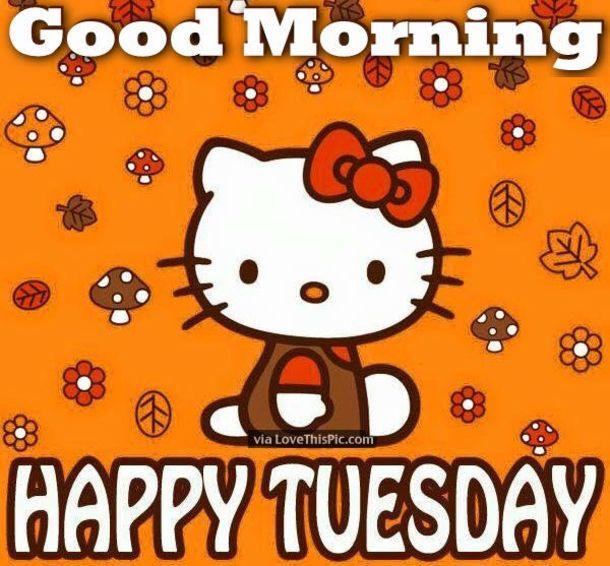 50 Cute Happy Tuesday Cartoon Quotes | Hello kitty nursery, Hello ...