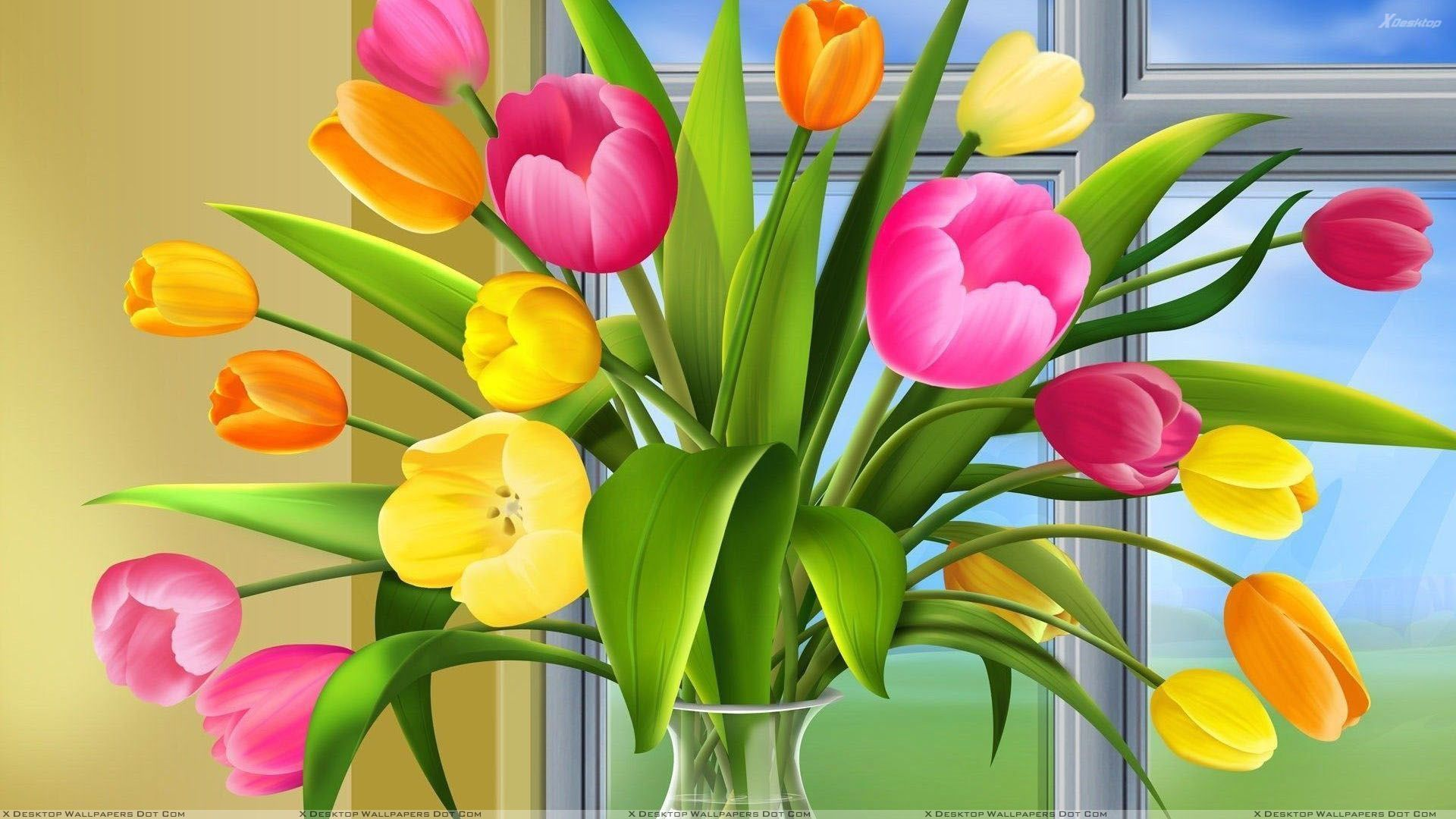 Colorful tulips HD wallpaper