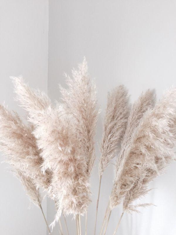 Photo of DIY – wedding decoration with pampas grass!