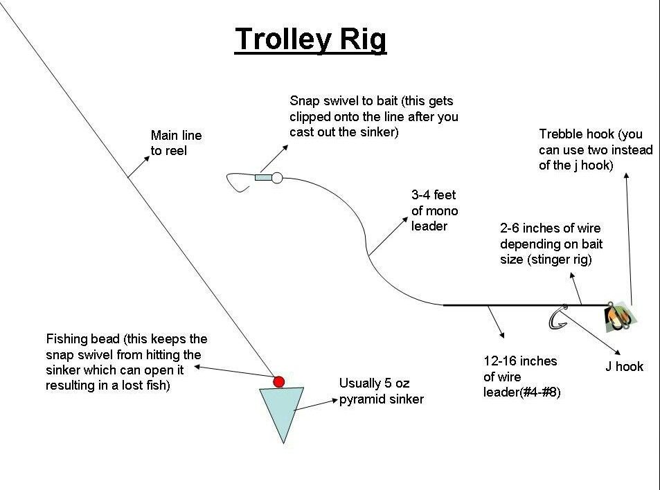 Trolley rig setup fishing pinterest rigs for A rig fishing