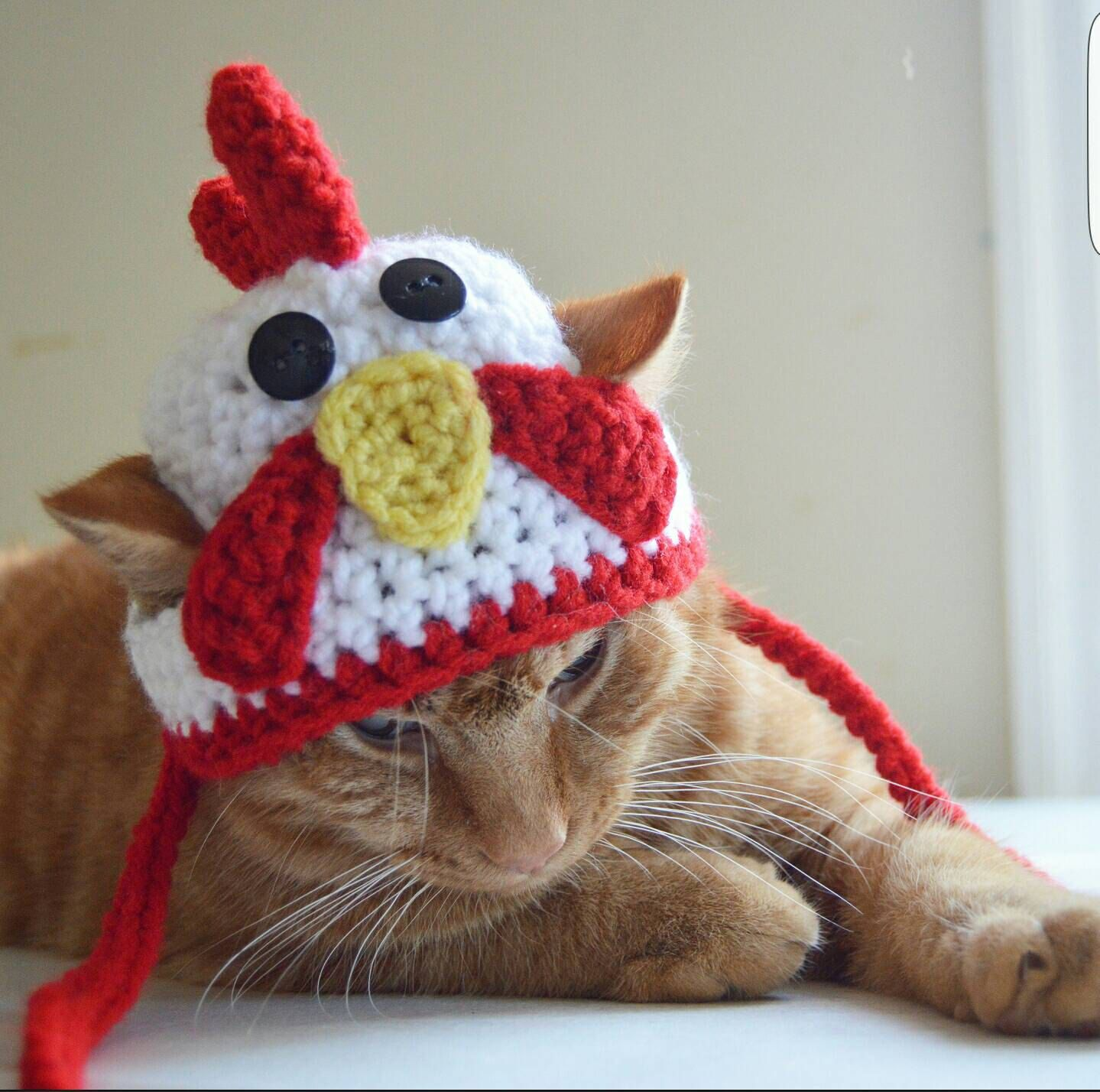 Old Macdonald May Have Had A Farm But I Bet He Never Had A Kitty Wearing A Rooster Cat Hat This Fun Rooster Hat For C Crochet Cat Pattern Crochet Cat