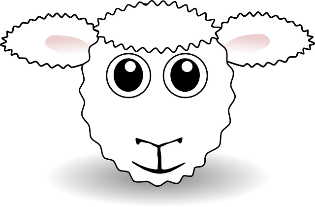 Free Image On Pixabay Sheep Farm Animal Agriculture Sheep Face Funny Sheep Sheep Cartoon