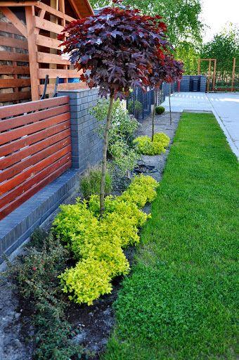 Moj Maly Ogrod To Mnie Wciaga Strona 7 Forum Ogrodnicze Ogrodowisko Modern Garden Garden Design Yard Landscaping