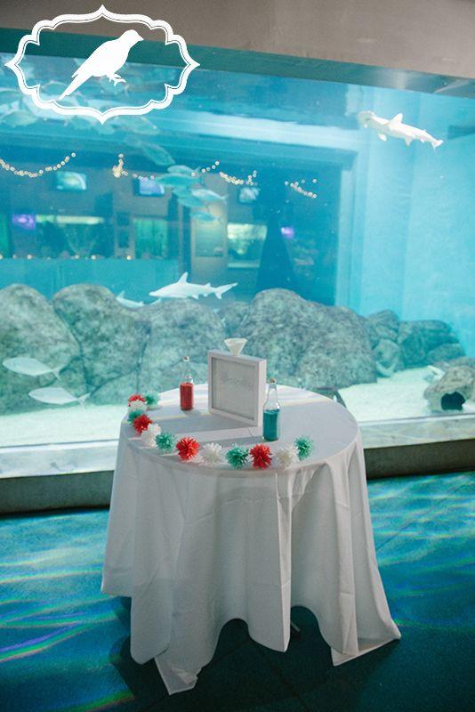 Toledo Zoo Aquarium Wedding Ceremony Photos By Luckybird Photography