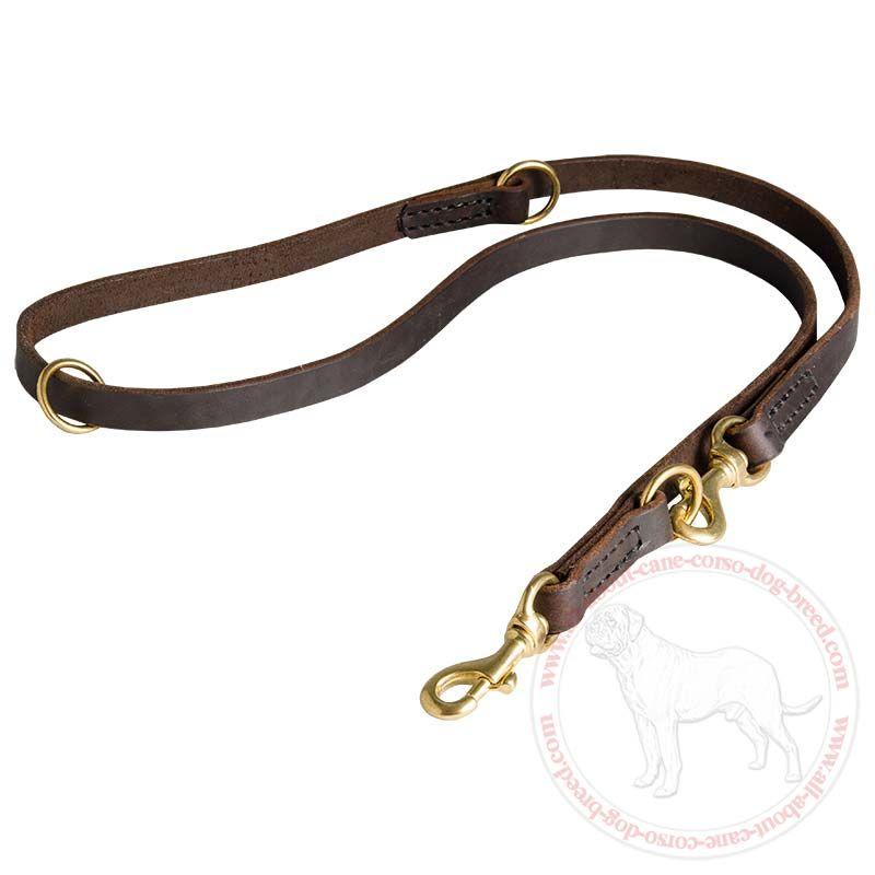 All About Cane Corso Dog Breed Com L120 1033 20 Mm Leather Leash Multi Functional Leather Leash Leather Dog Leash Cane Corso Dog