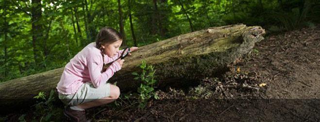 Reptiles at Cora Hartshorn Arboretum Short Hills, NJ #Kids #Events