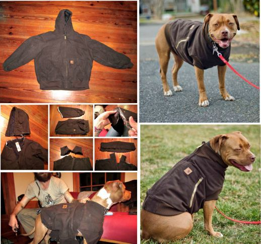 Remember to protect your dog from the elements too! DIY Dog  Coat - upcycled Hoodie