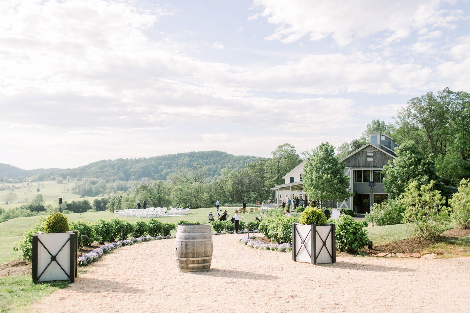 Pippin Hill Vineyards Charlottesville VA Wedding North