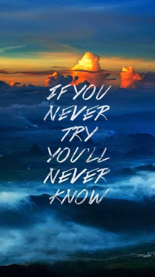 If You Never Try You Will Never Know Mybestqi Quotes