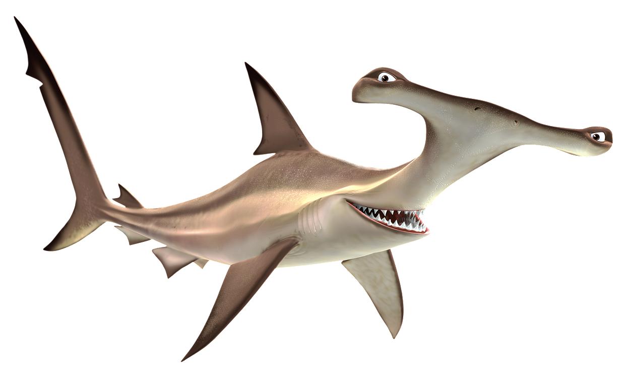 Акулы мультяшные картинки