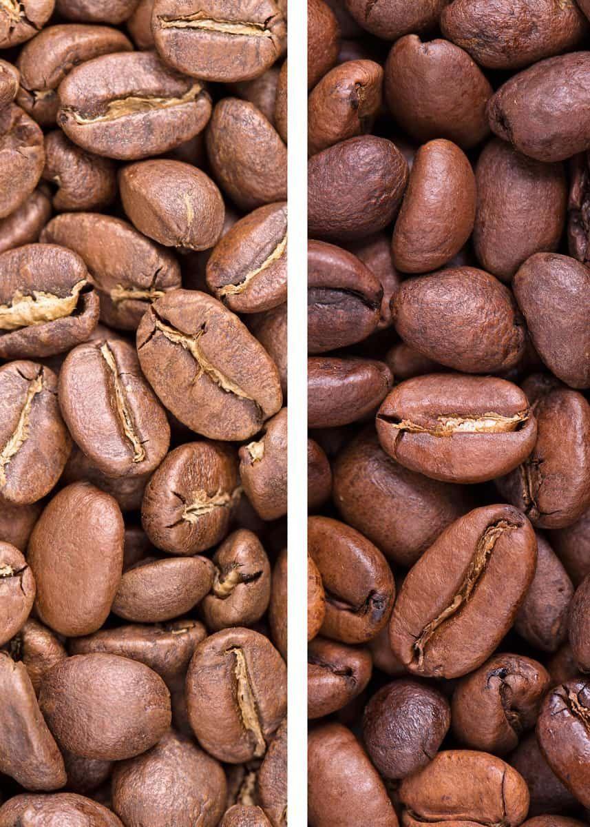11 Premium Coffee Bean Vanilla Powder Sugar Free In 2020 Coffee Type Gourmet Coffee Beans Coffee Bean Grinder