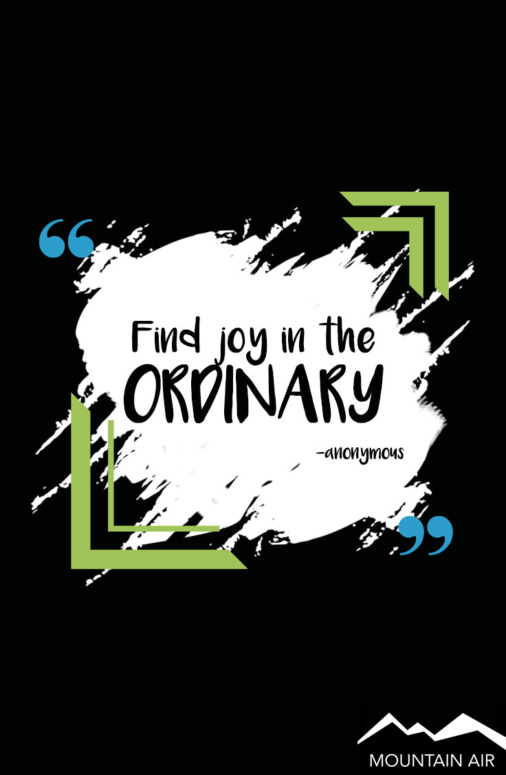 Make Today Extraordinary Quotes About Having Fun Best Quotes Finding Joy