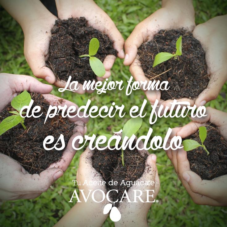 La mejor forma de predecir el futuro es creándolo. #Felicidad #Avocare #Oleolab #Positivo #AvocarePositivo