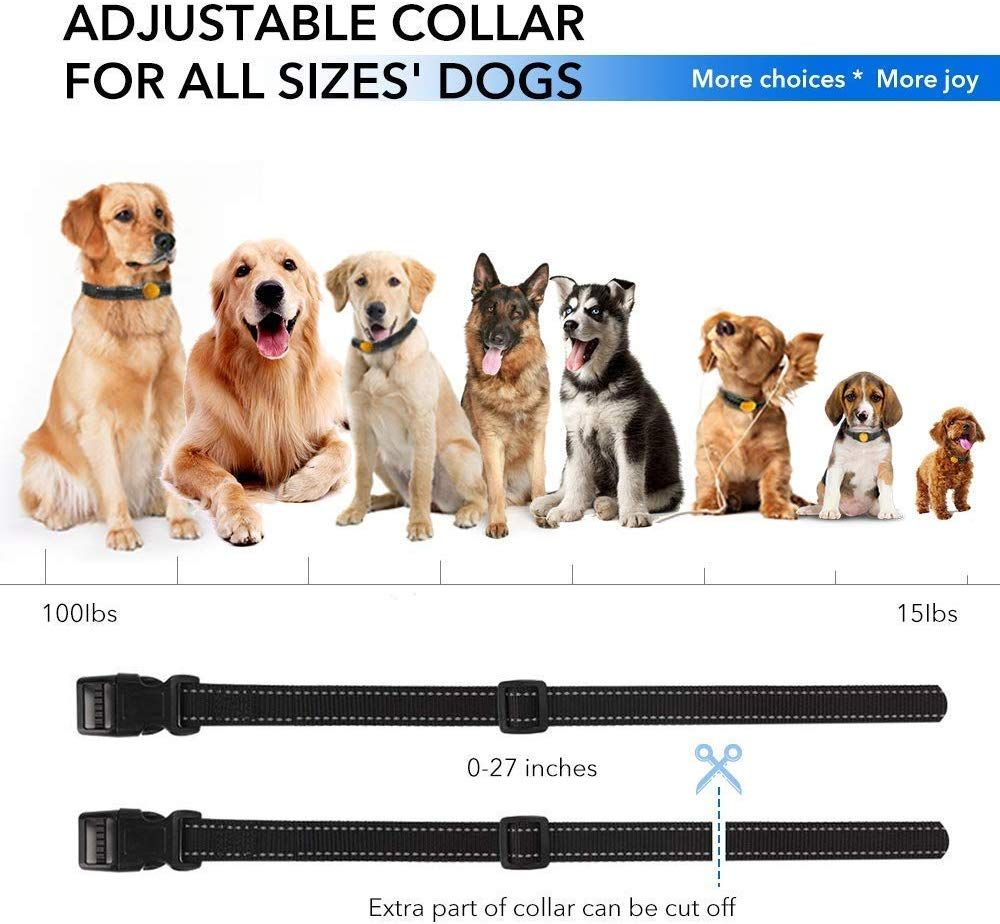 Shock Collar For Dogs 2019 Newest Dog Training Collar