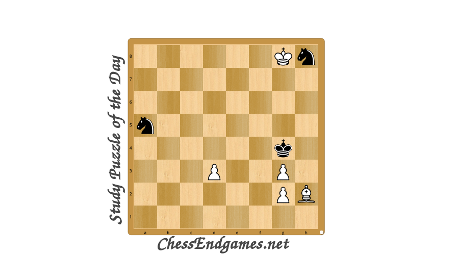 Study Puzzle of the Day 9/08/2020 * Chess Endgames Network