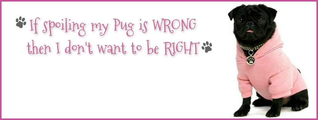 Pug Facebook Cover Photos For Your Timeline Pug Quotes Pug