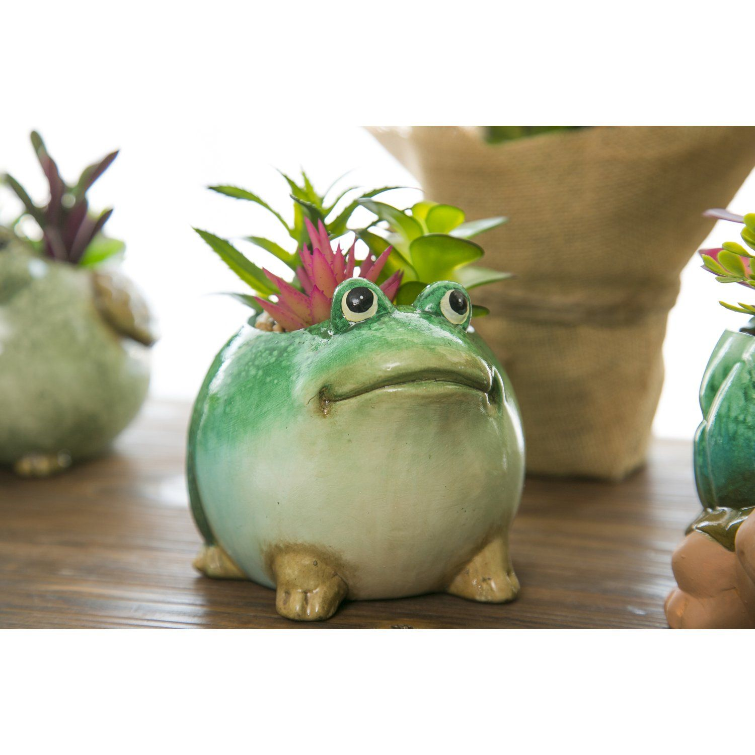 Photo of Ceramic Frog Planter with Faux Succulent